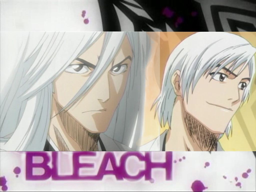 Bleach: Jushiro Ukitake - Picture